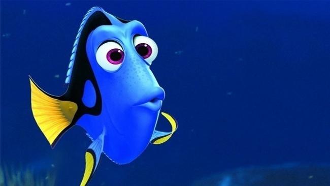 Dory, Hľadá sa Nemo